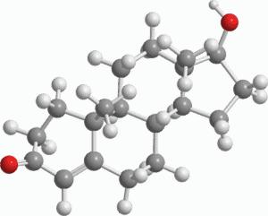 3-D-Modell von Testosteron
